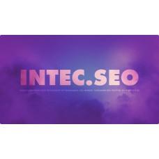 INTEC. SEO - модуль поисковой оптимизации: seo - фильтр, генерация сео - текстов, H1, мета-тегов