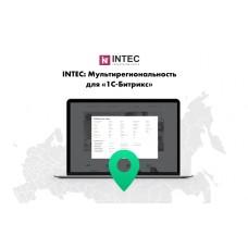 INTEC: Мультирегиональность - региональная сеть вашего сайта с продвижением в поисковиках